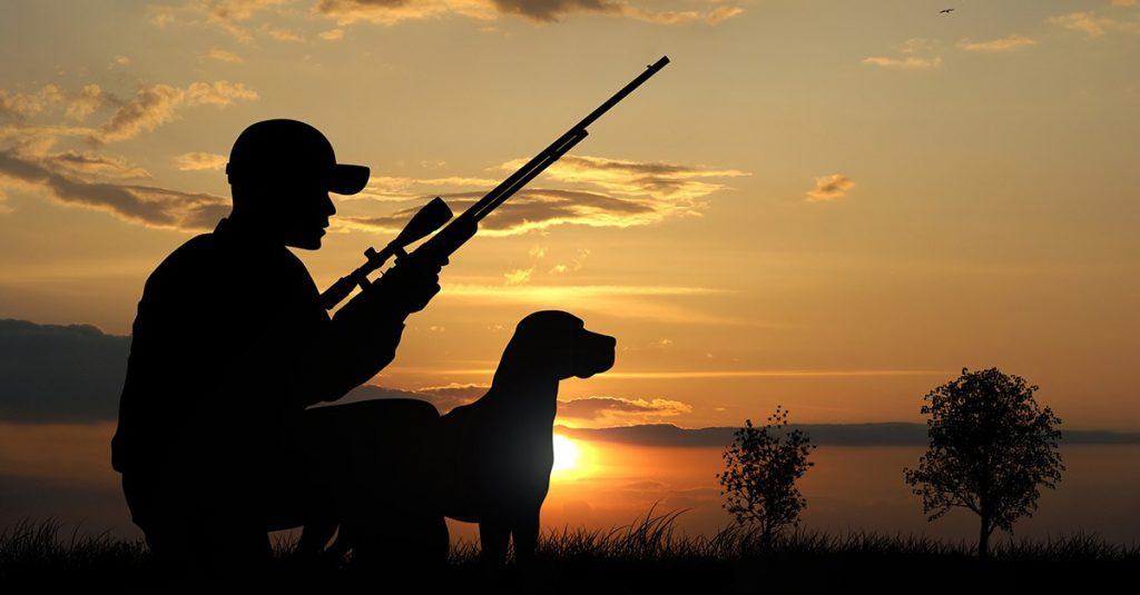 Reclamación de seguro de responsabilidad civil de cazadores