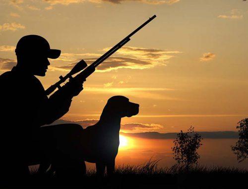 Responsabilidades en accidentes de caza